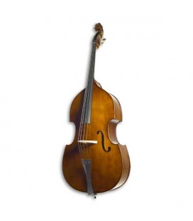 Stentor Double Bass Student 1/2 with Bow and Bag