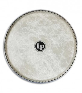 Photo of LP quinto head skin 11 inches model LP265AP front