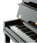 Photo detail of the keyboard of the Upright Piano Petrof P122 H1