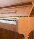 Photo detail of the body of the Upright Piano Petrof P125 F1