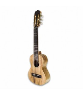Foto do guitalele APC GS