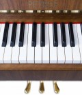 Photo detail of the keyboard and logo of the Upright Piano Petrof P118 P1