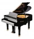 Piano de Cola Petrof P159 Bora Standard Series