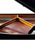 Foto detalhe do interior do Piano de Cauda Petrof P159 Bora
