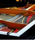 Foto detalle de la mecánica del Piano de Cola Petrof P159 Bora
