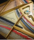 Photo detail of the action of the Grand Piano Petrof P173 Breeze