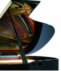 Photo detail of the body of the Grand Piano Petrof P194 Storm