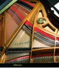 Photo detail of the interior of the Grand Piano Petrof P194 Storm