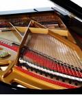 Foto do interior do Piano de Cauda Petrof P237 Moonsoon