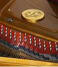 Foto detalhe do interior e cravelhas do Piano de Cauda Petrof P237 Moonsoon