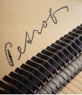 Foto detalhe do tampo harmónico com o nome da marca no Piano de Cauda Petrof P173 Breeze Demichipendale
