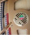Foto detalhe do interior do Piano de Cauda Petrof P173 Breeze Demichipendale