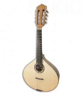 Mandolin Guitarrinha Artimúsica BD41GC Half Luxe Standard Machine Head