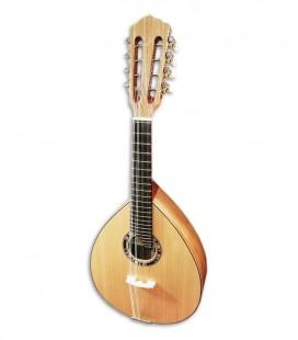 Photo of the Artimúsica mandolin BD40TC