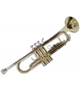 Trompete Sullivan TT100 Dourada Si bemol com Estojo