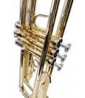 Photo detail of the valves of the trumpet Sullivan TT100