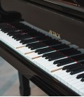 Photo detail of the workings of the Player System Pianoforce in a piano keyboard