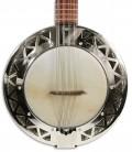 Photo of the Banjo Bandola APC model BJMDA100's top