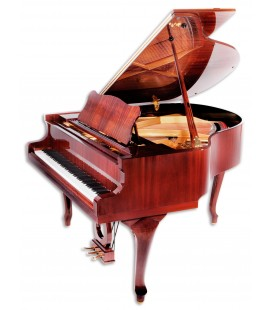 Grand Piano Petrof P159 Bora Demichipendale Style Collection