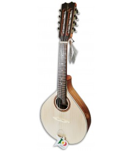 Photo of mandolin APC model MDL308