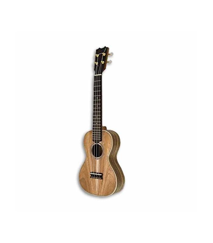 Photo of ukulele concerto APC CC