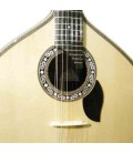 Guitarra Portuguesa Artimúsica Luthier Cabeça de Dragão Pau Santo Especial Braço Inteiriço Modelo Lisboa com Estojo