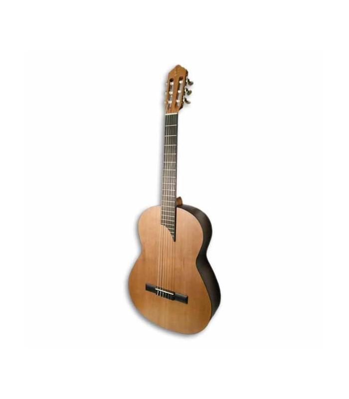 Instrumento de cuerdas APC Instruments 1C Mx