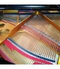 O design e qualidade do tampo harmónico do Pearl River GP150 PE produz uma tonalidade e ressonância de qualidade