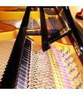 Piano Cauda Pearl River GP150 PE 150cm Preto Polido Traditional Baby Grande