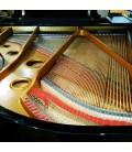 O piano de cauda Pearl River GP170 PE tem cordas Roslau alemãs