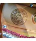 Logotipo no interior do piano de cauda Pearl River GP170 PE
