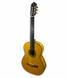 Guitarra Flamenca APC 5F Spruce e Maple