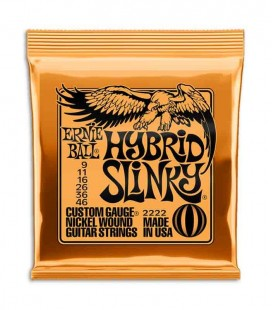 Ernie Ball Electric Guitar String Set 2222 009 to 046