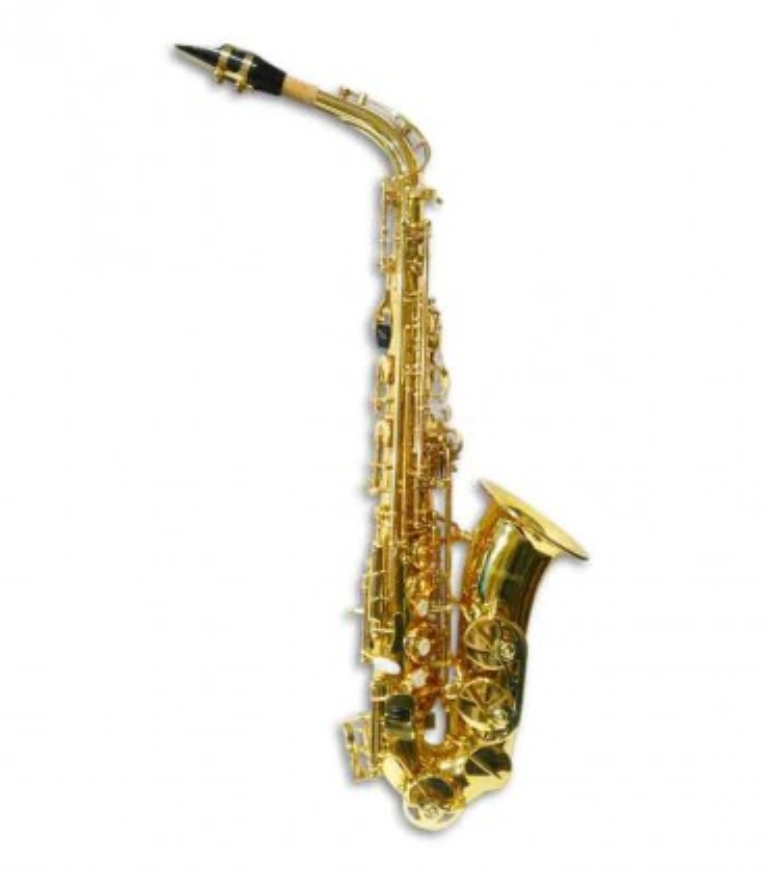 Foto do saxofone alto Sullivan SAXA200