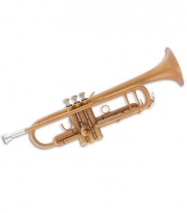 Trompete John Packer JP251SWFG Si Bemol Dourado Fosco com Estojo