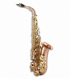 Photo of the John Packer Alto Saxophone JP045R