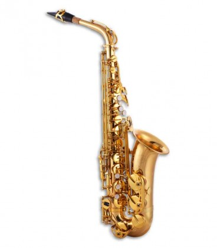 Foto do Saxofone Alto John Packer JP245