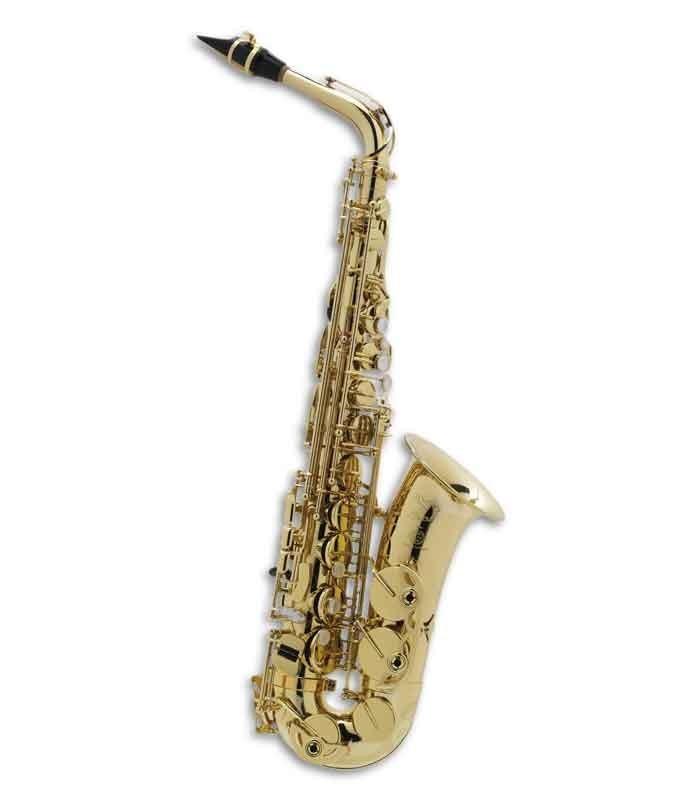 Saxofone Alto Selmer Axos Seles Mi Bemol Fá sustenido Agudo com Estojo