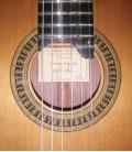 Guitarra Clássica Vicente Carrillo Concerto Primera Especial Cedro e Pau Santo com Estojo